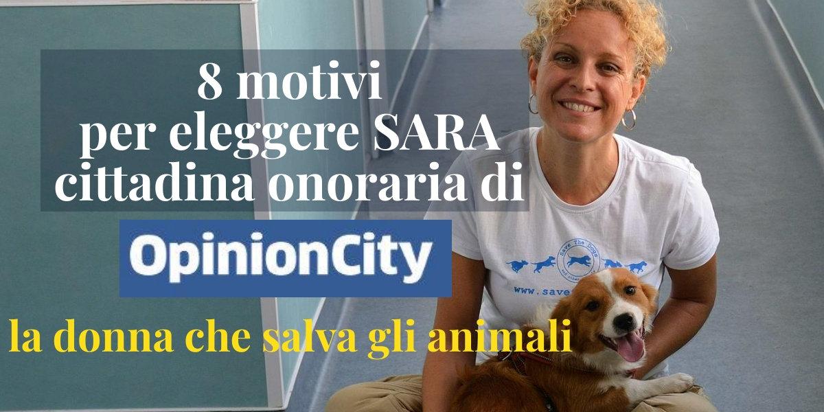 Sara Turetta - Save the dogs