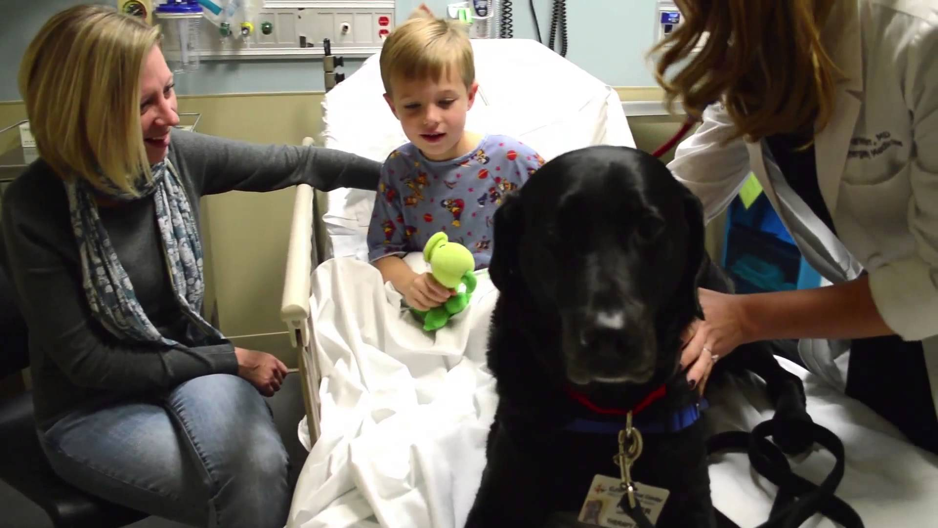 fraser pet therapy