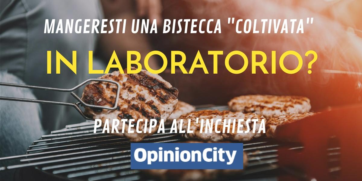 bistecca laboratorio